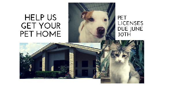 Help Us Get Your Pet Home - Pet Licenses Due June 30